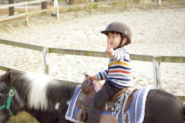 乗馬の画像イメージ
